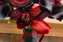 wedding bouquets... / by Jo Parker