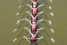 My rowing addiction / by Rachel Schroeck