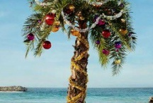 Tropical Christmas Party / Parties and decorating for a tropical Christmas party. / by Dustytoes