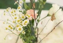 Les Fleurs  / by Grace Neumann