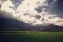 Camarillo, California / Wonderful place to see with mountain views, farm land, shopping and parks / by Denise Nicolet