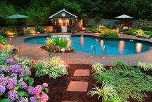 Dream Backyard / by Wyne Cler