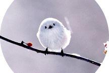 Cute as a Button / by Pamela Nicholas