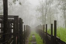 Fences / by Wilfred Wong