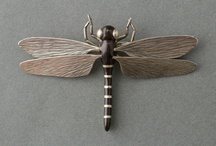 Vintage insects / by Marcy