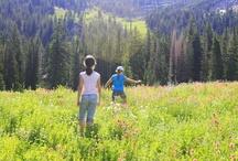 Utah~things to do / by Judi Pearson