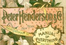 Vintage seed packets (flowers) / by Lena Chinners