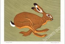 Rabbits & hares / by Sandra de Haan
