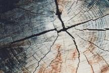 textures / by Jesu Reitze