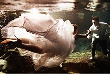 Underwater Photography / by NY Gets Wed