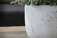 Concrete / by Olga Fradina