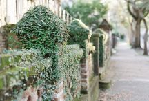Smiling faces, beautiful places. South Carolina.  / by susan lamberger