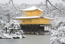 Japan / by Saori