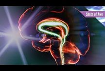 Educate - Technology / by IntelRev .tv