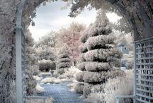Benches / by Nancy Naigle