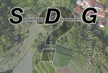 Governance / Every pin related to environmental or forest governance. / by CIFOR - Center for International Forestry Research