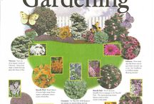 Gardens and ponds / Yard gardening tips and ideas / by Elizabeth Hill