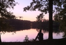 Arkansas State Parks / by Arkansas Tourism
