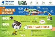 Ocean Infographics / by Adventure Aquarium