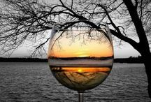 Thru the glass / by Karen