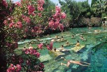 Dream Vacations / by Manda Naw