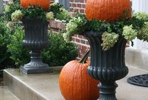 Fall and christmas decoration / by BM
