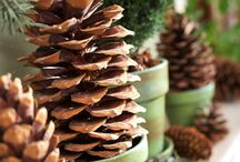 PINECONE DECORATIONS / by Julie Alexander