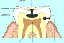 Dental / by Christy LeClair
