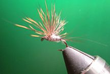 Dry Flies / by Call of the Wild Flies