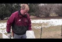 Bill's Gardening Videos / by Hawthorn Gardens
