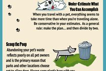 Pet Friendly Travel / by vacation cottages