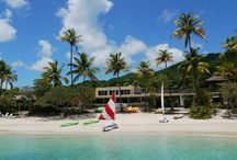 Guest Pinner: Caneel Bay / We've invited the Caneel Bay to share some of their favorite spots in the U.S. Virgin Islands. Follow them here for a relaxing Caribbean getaway. #ahinsiders / by Andrew Harper Travel