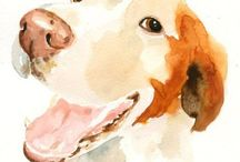 Pets and animals / by Debra Clark