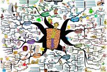 Adam Sicinski / Mind maps created by Adam Sicinski. More mind maps can be found @ www.IQmatrix.com / by IQ Matrix