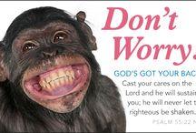 Encouragement / by Sugar-Free Mom | Brenda Bennett