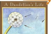 Children's Books  / by Mandy Shelton-Johnstone