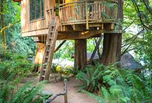 Tree Houses (The best kind of houses) / A collection of #treehouses for kids and grown-ups, collected from places all over the world / by katie: normal girl