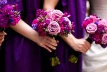 Wedding Ideas / by Caitlin Stewart