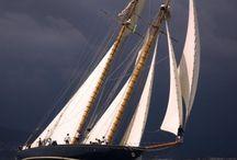 Sailing / by Kari Delligatti