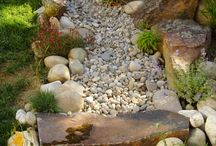 Xeriscape / Landscaping / by Allyson Williams