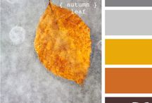 fall is my favorite / by alisonchino