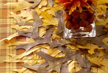 Thanksgiving table decoration easy to do at home / by Christine Stein
