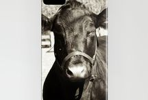 iPhone Cases<3 / by Heather Malott