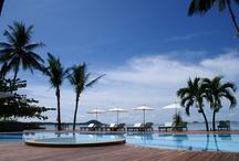Centra Coconut Beach Resort Samui / by Centara HotelsResorts
