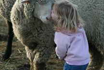 Kids and Critters....Tooo Cute!!! / by Jami Myatt