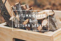 // autumn / by Paulien   www.polienne.com