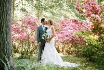 wedding photography / by tammy noth bonovitz