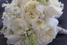 Flowers,Flowers, Flowers, and more Flowers what a beauty!! / by Minerva Magana