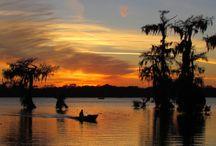 Louisiana Pics / by Stacey Treadaway / Anderson