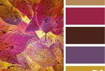 Colour Schemes / Colour Inspiration / by Efelants Woozles